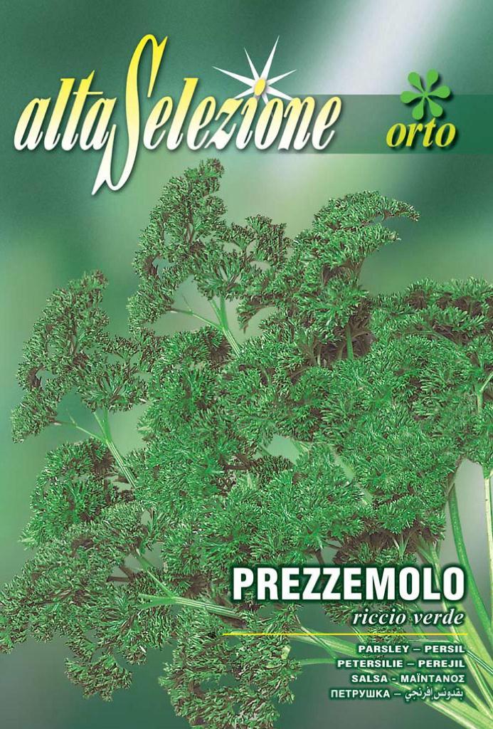 Seminte patrunjel de frunze Riccio Verde - 8 gr.
