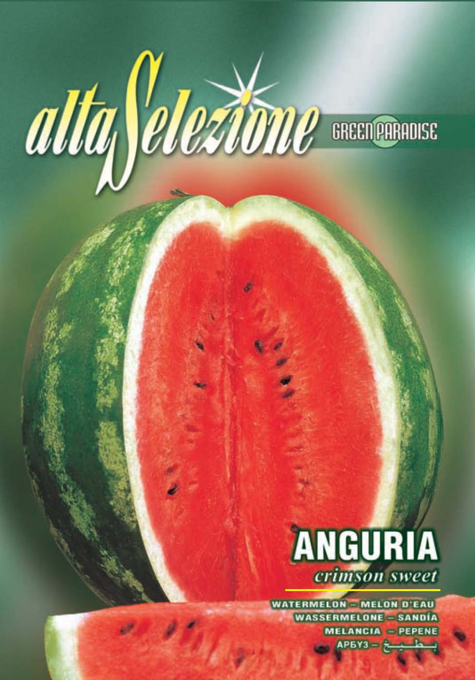Verdon - Seminte pepene verde Anguria Crimson Sweet, 4gr.