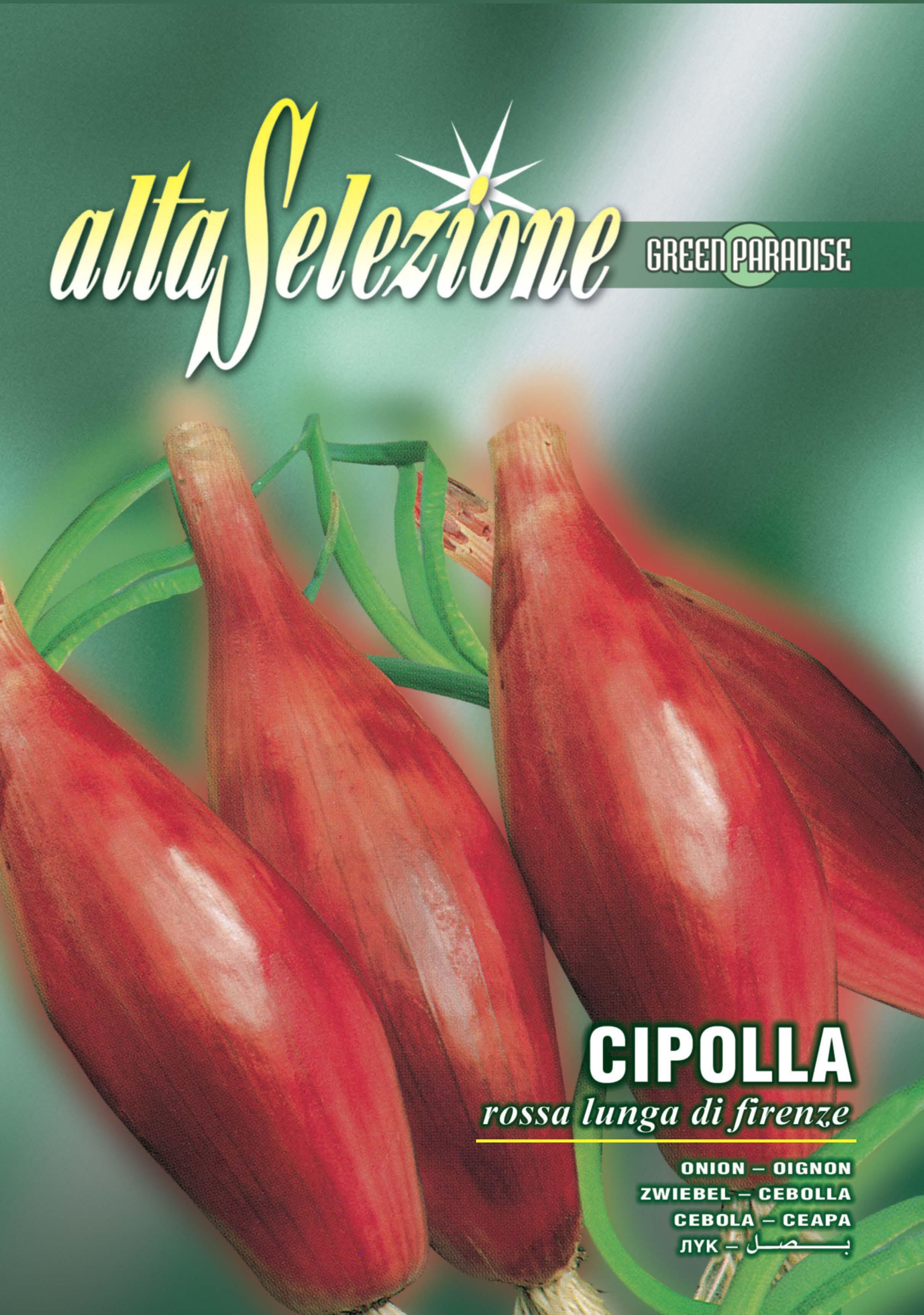 Seminte ceapa rosie Rossa Lunga Di Firenze - 3 gr.