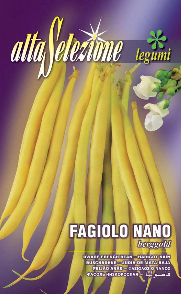 Fasole oloaga fideluta aurie - Berggold