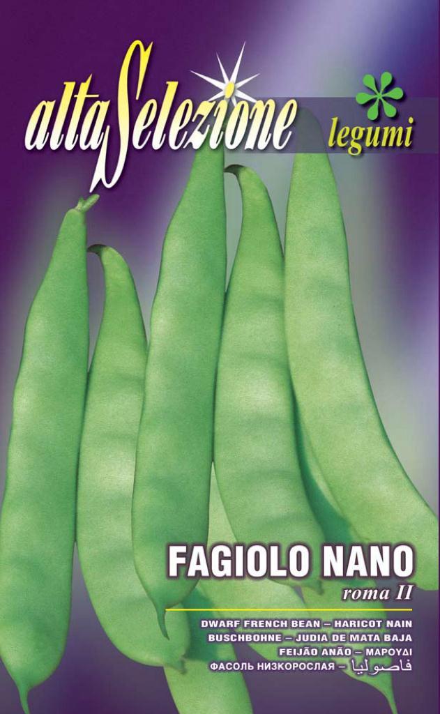 Fasole oloaga lata verde - Roma II