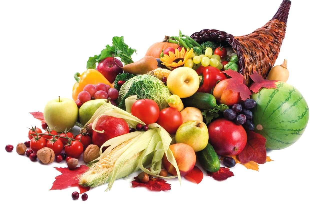 Sporuri de productie la legume si fructe - Cropmax