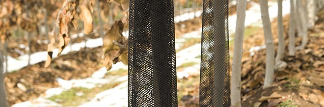 Plasa de protectie pentru protejarea plantatiilor de pomi impotriva rozatoarelor - Verdon