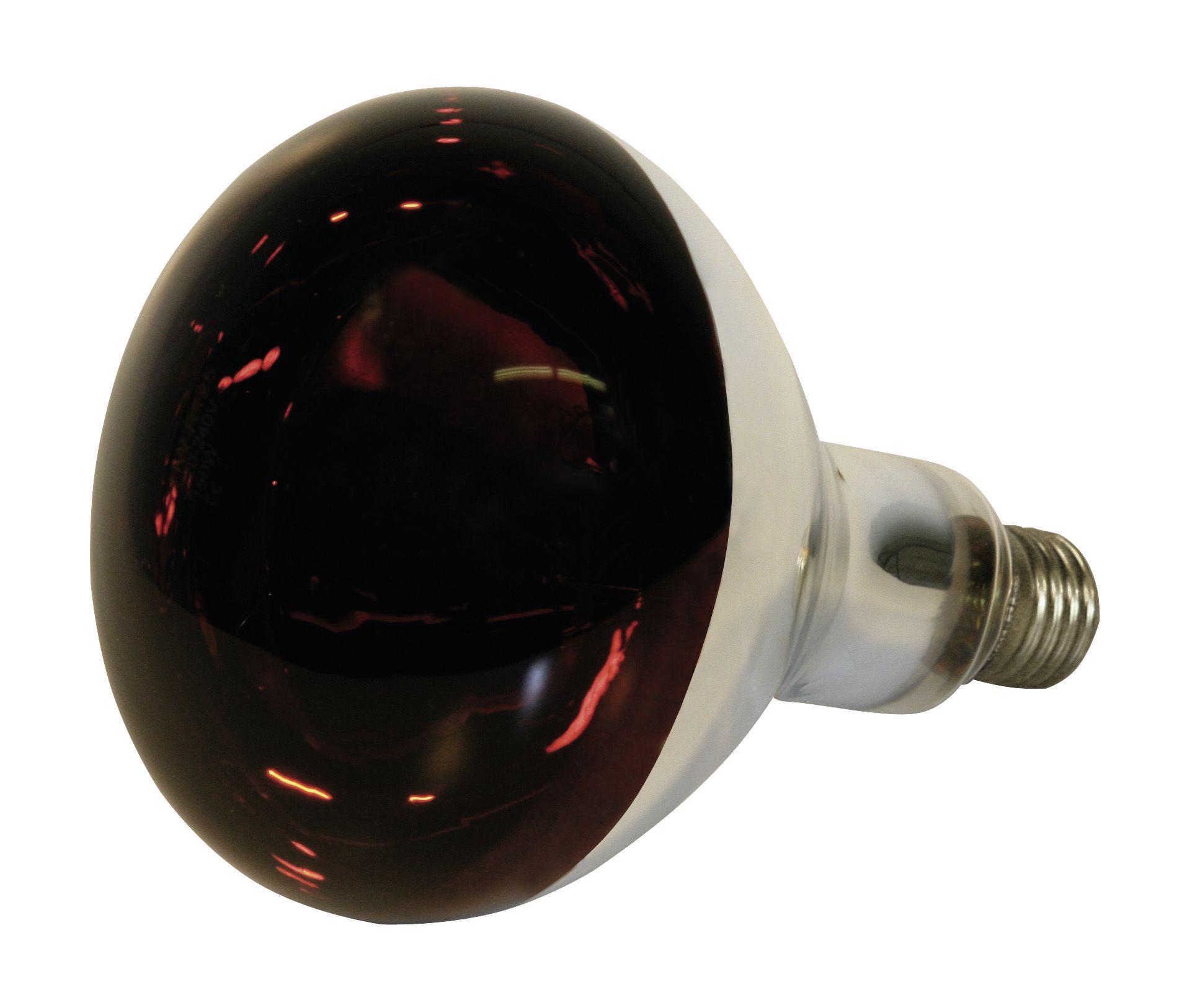 Bec infrarosu sticla rosie Kerbl 150 W