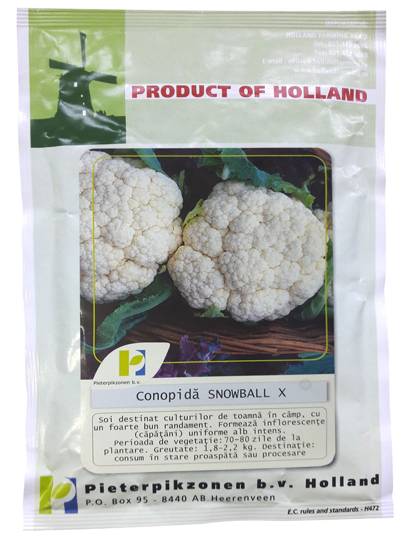 Verdon - Seminte conopida Snowball PPZ Olanda