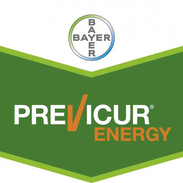 Logo Previcur Energy