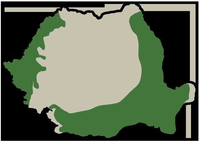 Grupa FAO 500-600
