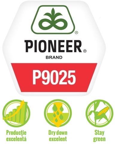 Logo Pioneer P9025