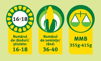 Caracteristici agrochimice P9486 Pioneer Aquamax