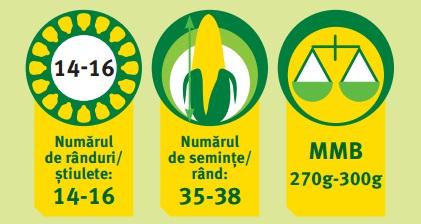 Pioneer PR38A24 caracteristici agronomice