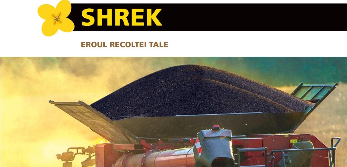 Hibrid de rapita Shrek Rapool