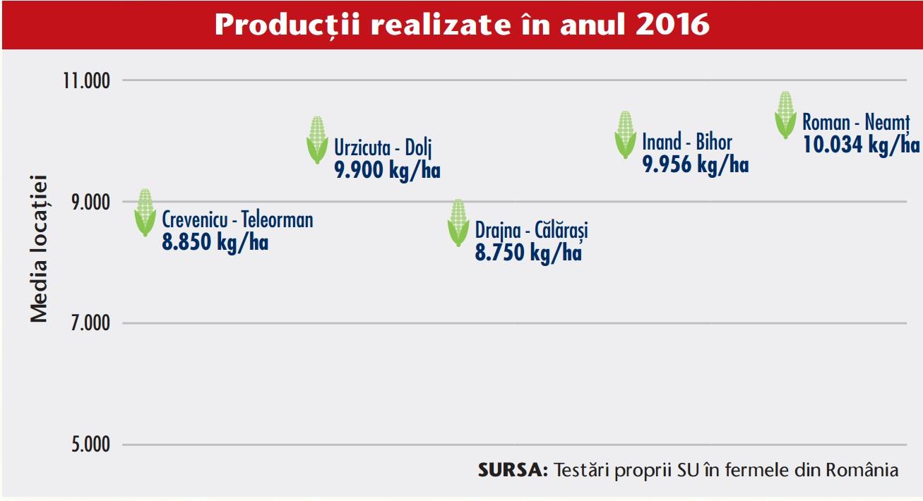 Productii realizate hibrid porumb OSSK 396 300