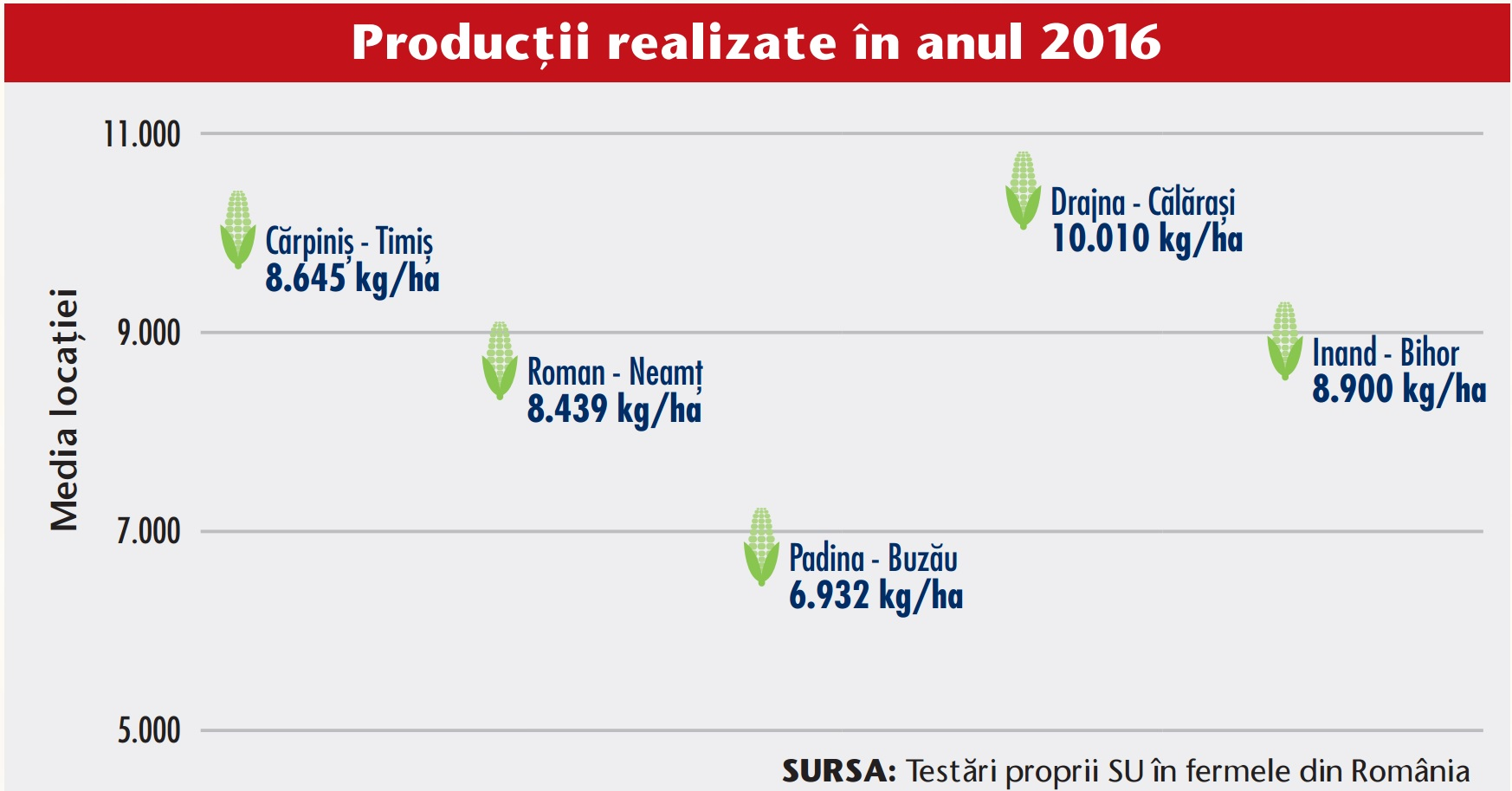 Productii realizate hibrid porumb Suanito 300