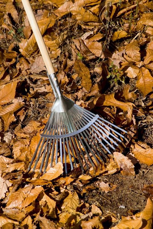 Grebla Stocker pentru frunze, reglabila (fara coada)