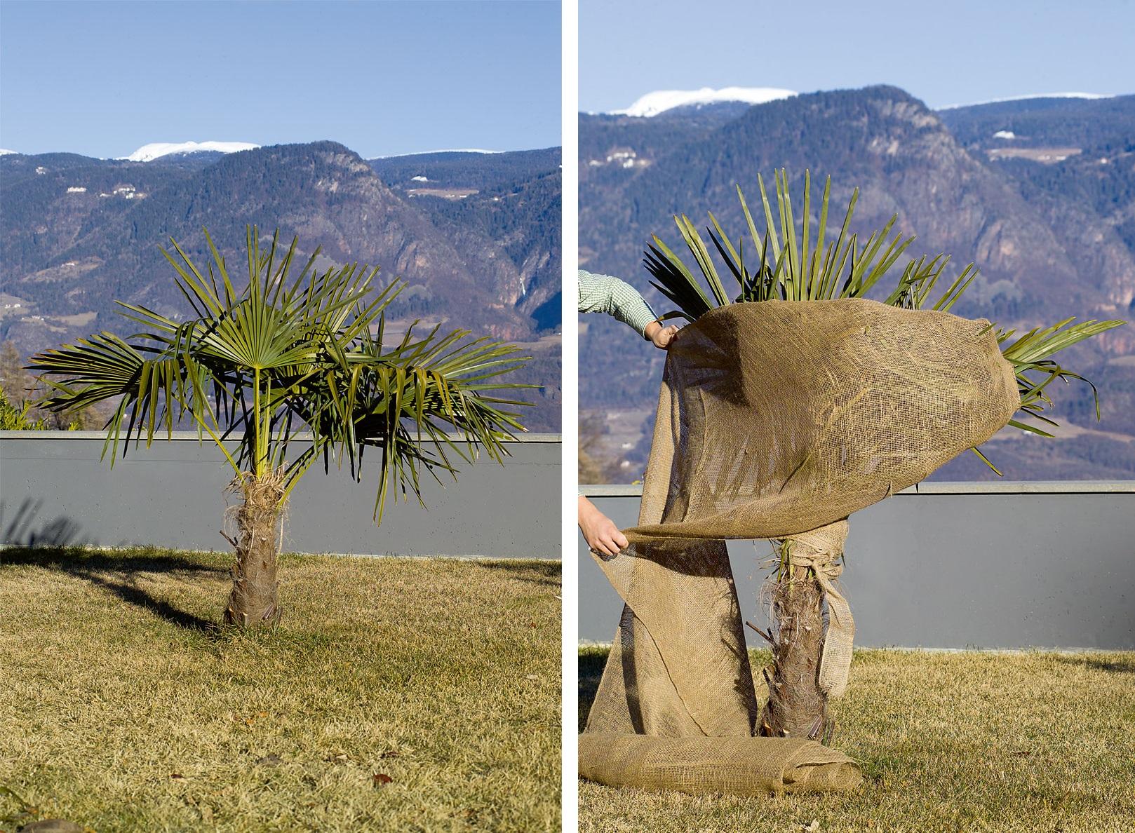 Husa iuta Protec protectie plante