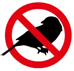 Logo anti - pasari